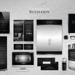 Franklin Bushawn Styling