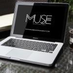 MUSE Branding & Development